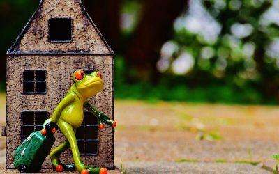9 Pasos para un exitoso divorcio de mutuo acuerdo